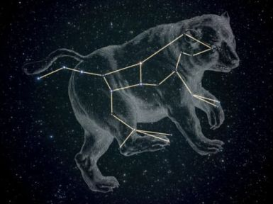 Ursa major - latin infinitive feminine